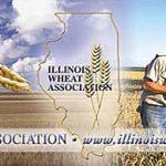 Farm Bureau's #GratefulForGrubSeries: Illinois Wheat