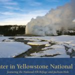 Winter in Yellowstone!