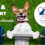 Complimentary Pet and Parent Fitness Classes Offered at Bethany Animal Hospital!